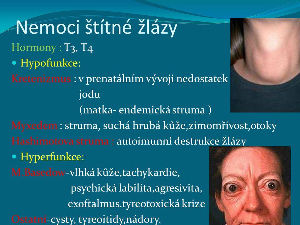 Nemoci štítné žlázy Hormony : T3, T4 Hypofunkce: Kretenizmus : v prenatálním vývoji nedostatek jodu (matka- endemická struma ) Myxedem : struma, suchá hrubá kůže,zimomřivost,otoky Hashimotova struma : autoimunní destrukce žlázy Hyperfunkce: M.Basedow-vlhká kůže,tachykardie, psychická labilita,agresivita, exoftalmus.tyreotoxická krize Ostatní-cysty, tyreoitidy,nádory.