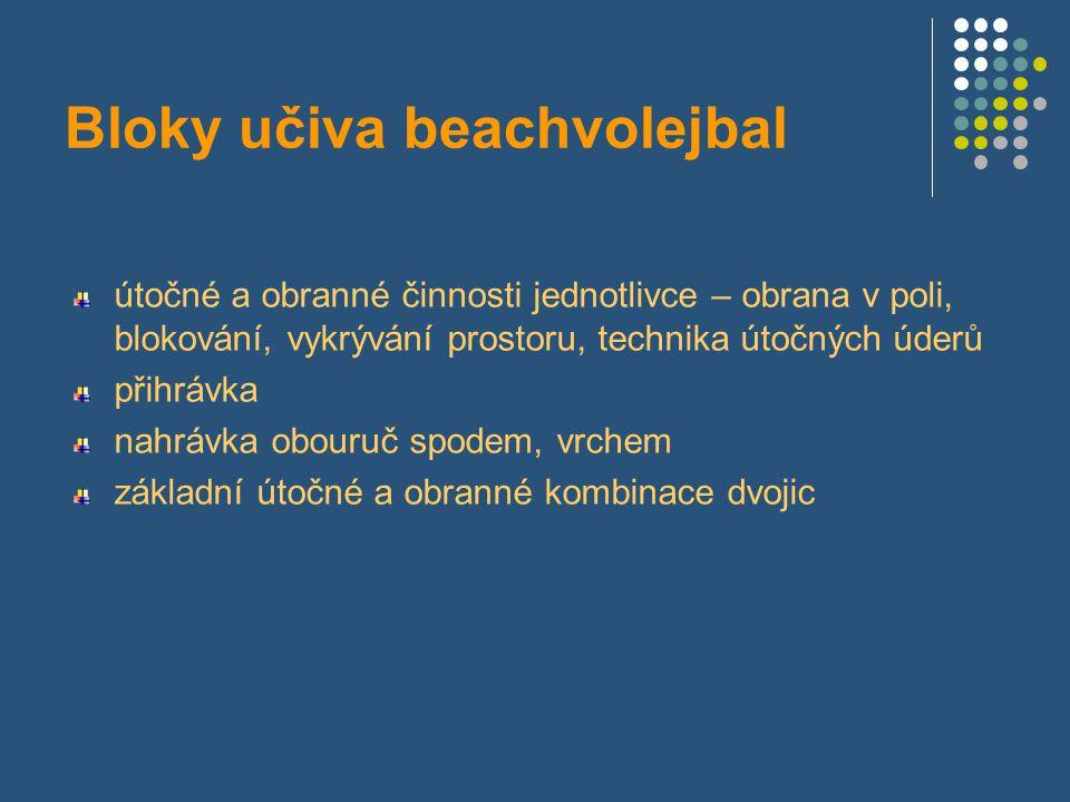 Přednášky 1.beachvolejbal a streetball – systematika sportu 2.