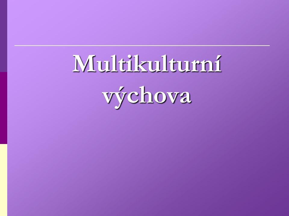 Multicultural Education Interkulturelle Erziehung:  je relativně nový pedagogický pojem (fenomén), který teprve začátkem 90.