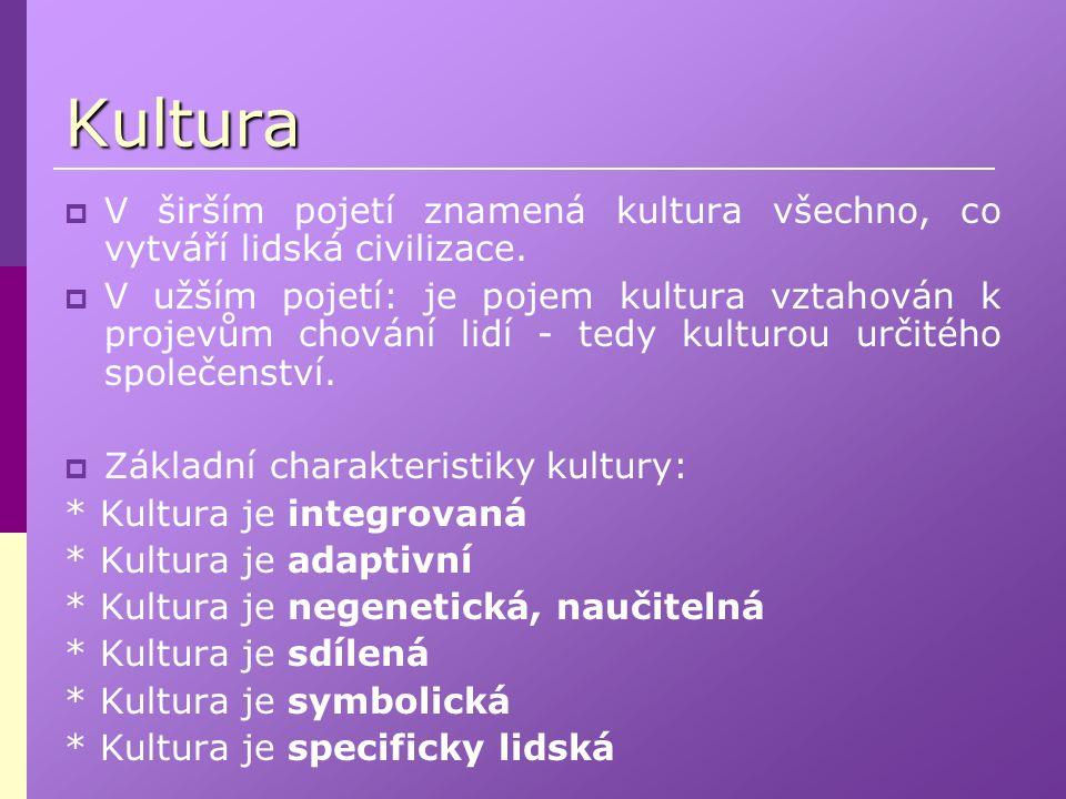 Kultura  V širším pojetí znamená kultura všechno, co vytváří lidská civilizace.  V užším pojetí: je pojem kultura vztahován k projevům chování lidí