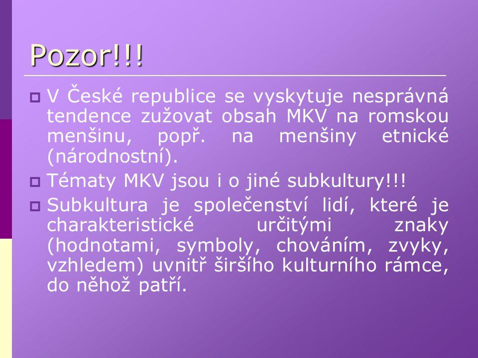 Pozor!!!  V České republice se vyskytuje nesprávná tendence zužovat obsah MKV na romskou menšinu, popř. na menšiny etnické (národnostní).  Tématy MK