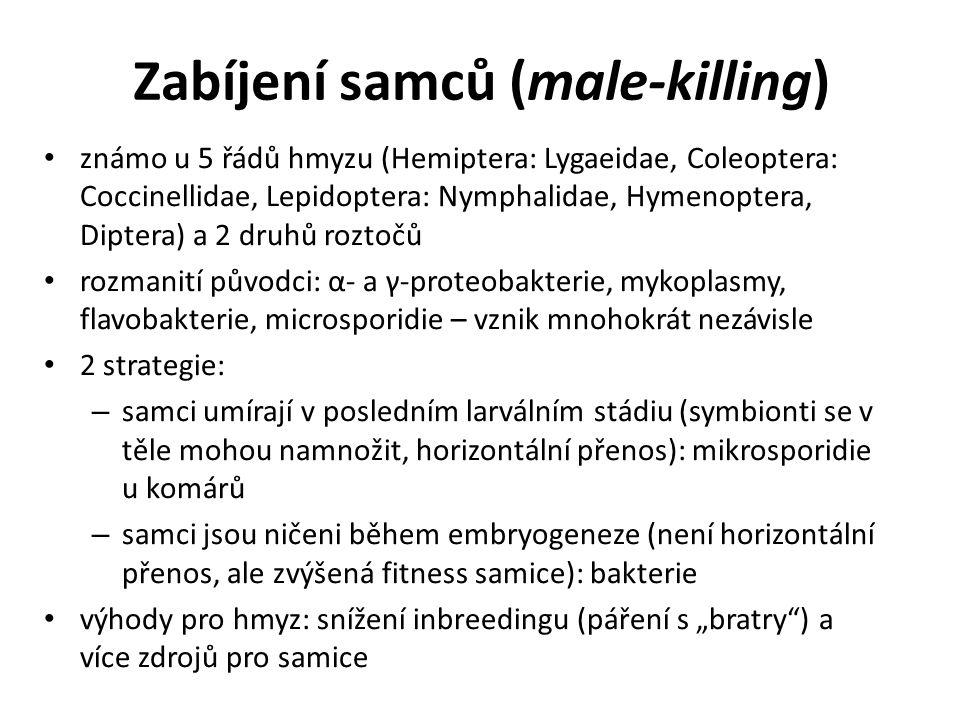 Zabíjení samců (male-killing) známo u 5 řádů hmyzu (Hemiptera: Lygaeidae, Coleoptera: Coccinellidae, Lepidoptera: Nymphalidae, Hymenoptera, Diptera) a