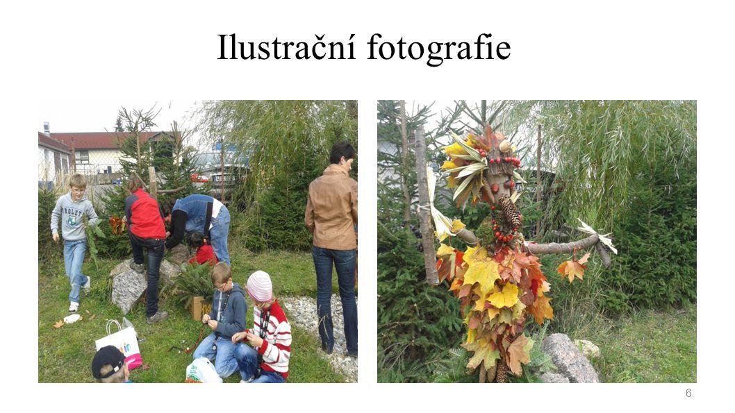 Ilustrační fotografie 6