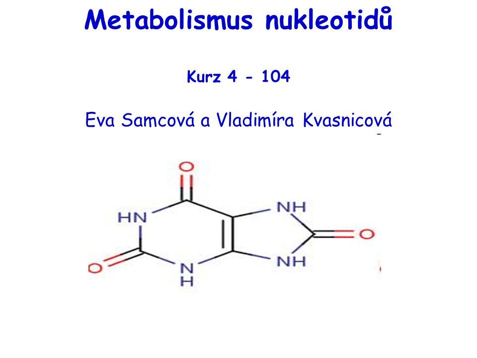 významné meziprodukty: * kyselina orotová (pyrimidinový skelet) * orotidinmonofosfát (OMP) * uridinmonofosfát (UMP) = výchozí látka pro syntézu dalších nukleotidů produkty:* cytidintrifosfát (z UTP) * deoxythimidinmonofosfát (z dUMP) Syntéza pyrimidinových nukleotidů de novo (II)
