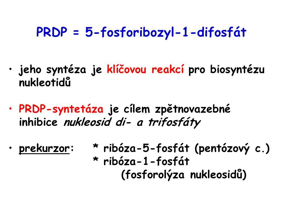 PRDP = 5-fosforibozyl-1-difosfát jeho syntéza je klíčovou reakcí pro biosyntézu nukleotidů PRDP-syntetáza je cílem zpětnovazebné inhibice nukleosid di- a trifosfáty prekurzor:* ribóza-5-fosfát (pentózový c.) * ribóza-1-fosfát (fosforolýza nukleosidů)