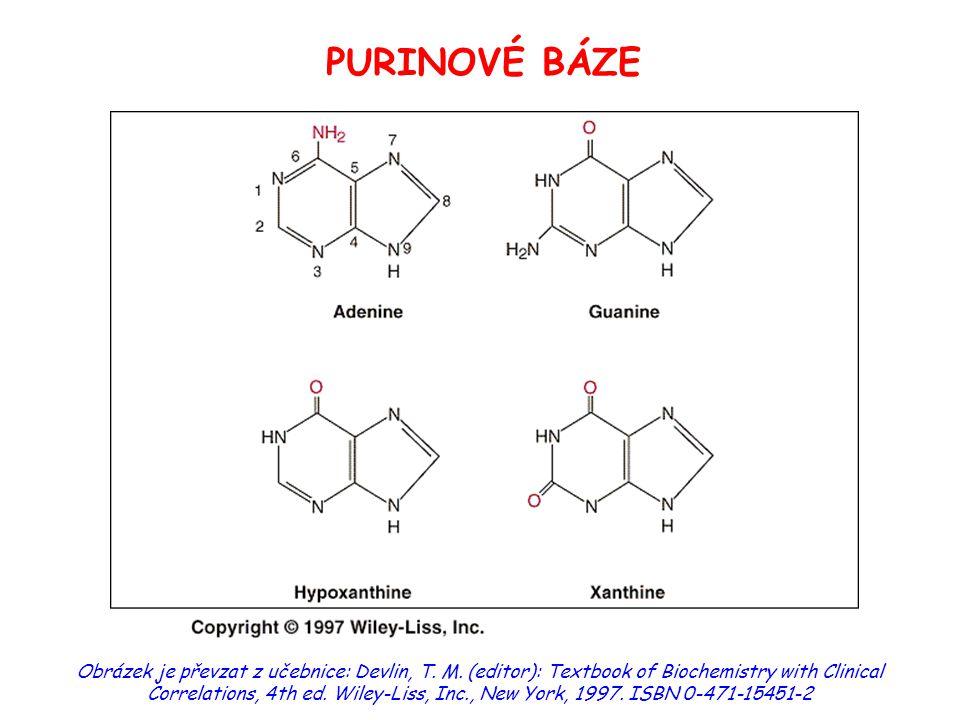 """Nukleotidy v metabolismu 1) energetický metabolismus ATP - hlavní biologický přenašeč volné energie – """"energetická konzerva (30 kJ/mol / odštěpení fosfátu)  fosfotransferasové reakce (kinasy)  svalová kontrakce, aktivní transport 2) monomerní jednotky RNA a DNA  substráty pro syntézu: nukleosidtrifosfáty"""