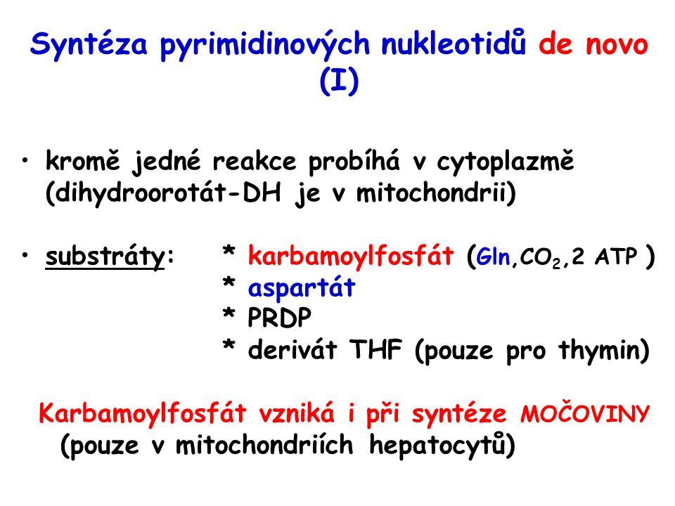 Syntéza pyrimidinových nukleotidů de novo (I) kromě jedné reakce probíhá v cytoplazmě (dihydroorotát-DH je v mitochondrii) substráty:* karbamoylfosfát ( Gln,CO 2,2 ATP ) * aspartát * PRDP * derivát THF (pouze pro thymin) Karbamoylfosfát vzniká i při syntéze MOČOVINY (pouze v mitochondriích hepatocytů)