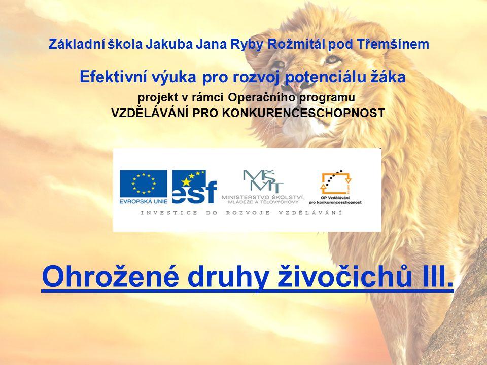 Téma: Ohrožené druhy živočichů III.– 3. – 5. ročník Použitý software: držitel licence - ZŠ J.