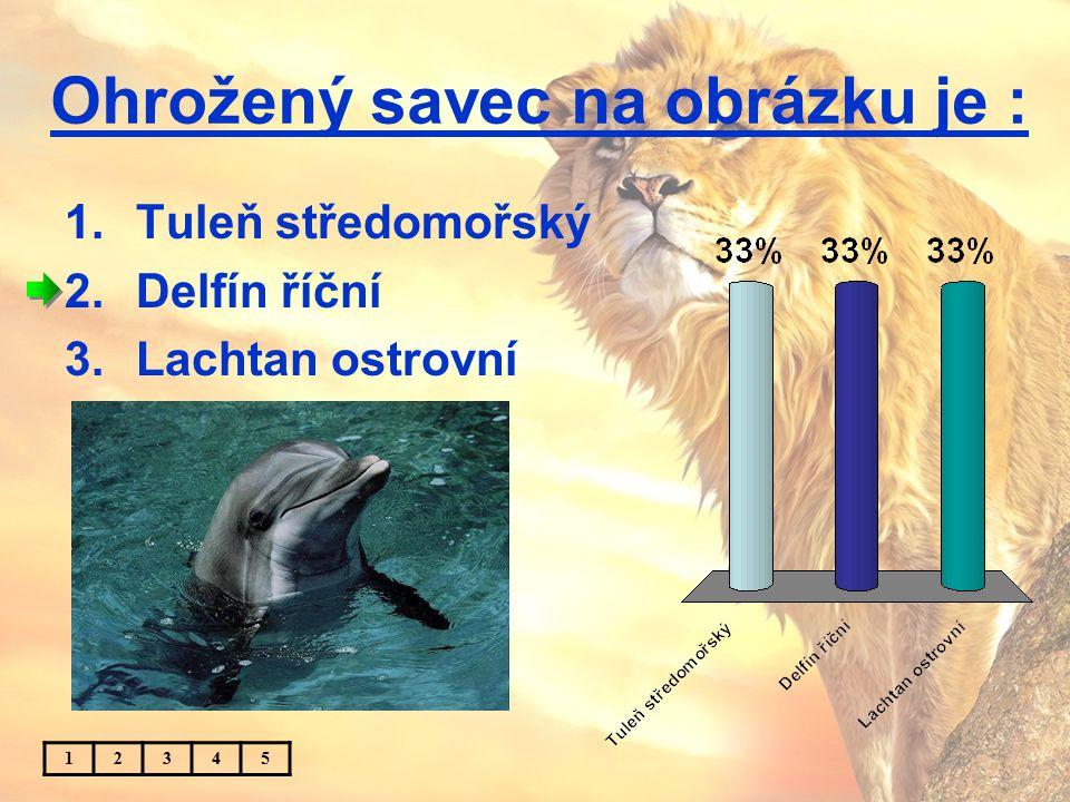 Ohrožený savec na obrázku je : 1.Tuleň středomořský 2.Delfín říční 3.Lachtan ostrovní 12345