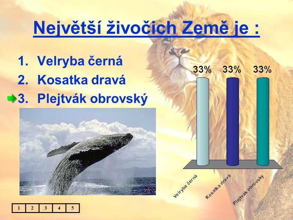Největší živočich Země je : 1.Velryba černá 2.Kosatka dravá 3.Plejtvák obrovský 12345