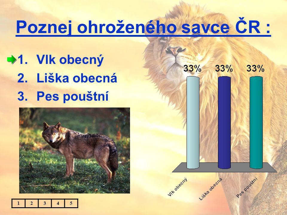 Poznej ohroženého savce ČR : 1.Vlk obecný 2.Liška obecná 3.Pes pouštní 12345