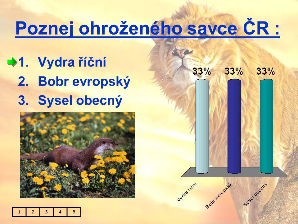 Poznej ohroženého savce ČR : 1.Vydra říční 2.Bobr evropský 3.Sysel obecný 12345