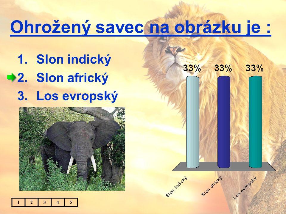 Ohrožený savec na obrázku je : 1.Slon indický 2.Slon africký 3.Los evropský 12345