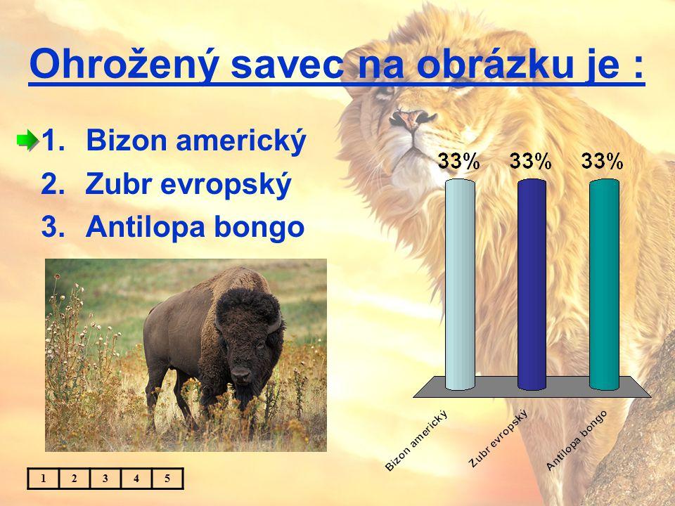 Ohrožený savec na obrázku je : 1.Bizon americký 2.Zubr evropský 3.Antilopa bongo 12345