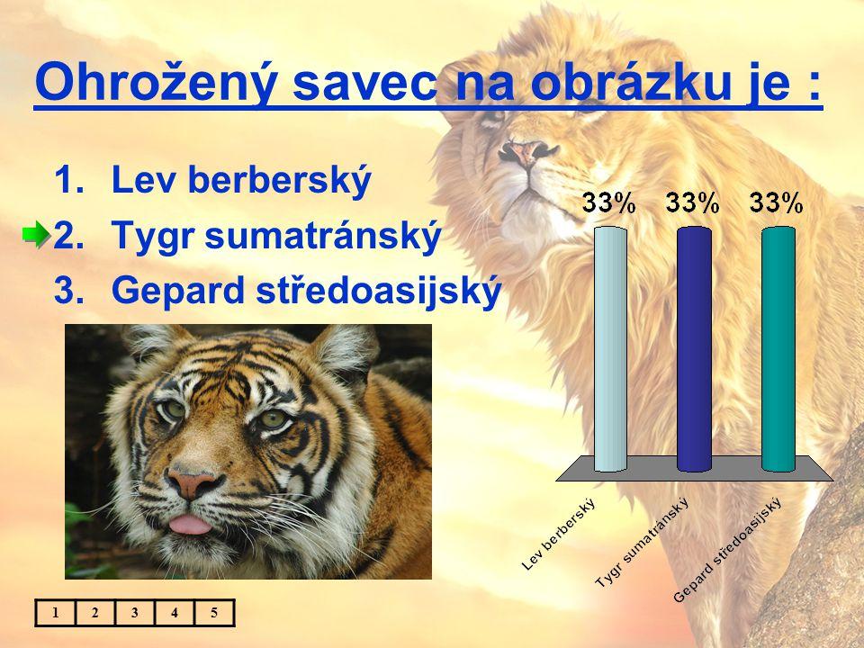 Ohrožený savec na obrázku je : 1.Lev berberský 2.Tygr sumatránský 3.Gepard středoasijský 12345
