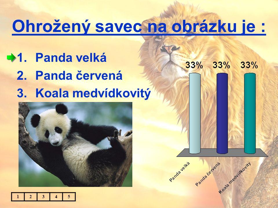Panda pochází z : 1.Číny 2.Japonska 3.Indie 12345