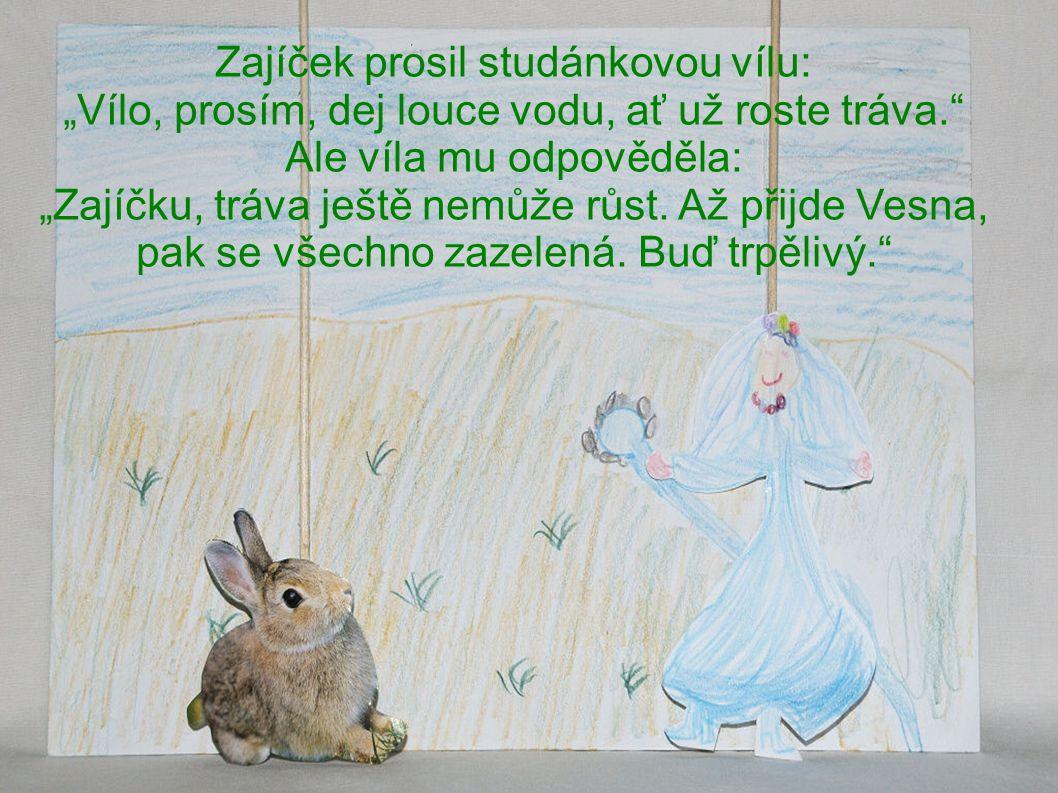 """Zajíček prosil studánkovou vílu: """"Vílo, prosím, dej louce vodu, ať už roste tráva. Ale víla mu odpověděla: """"Zajíčku, tráva ještě nemůže růst."""