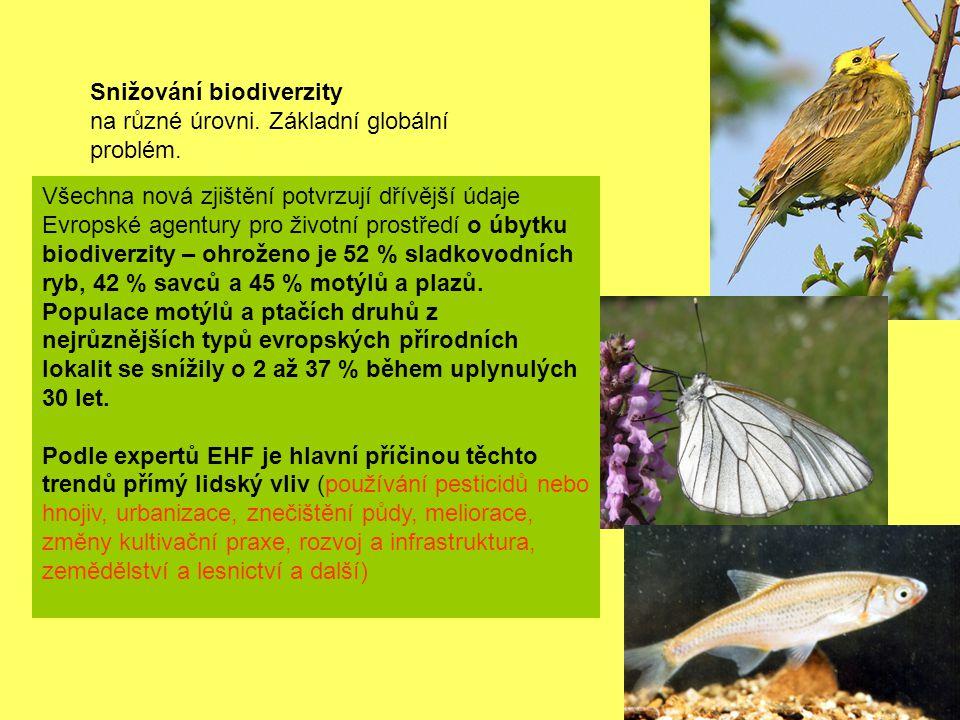 Snižování biodiverzity na různé úrovni. Základní globální problém. Všechna nová zjištění potvrzují dřívější údaje Evropské agentury pro životní prostř