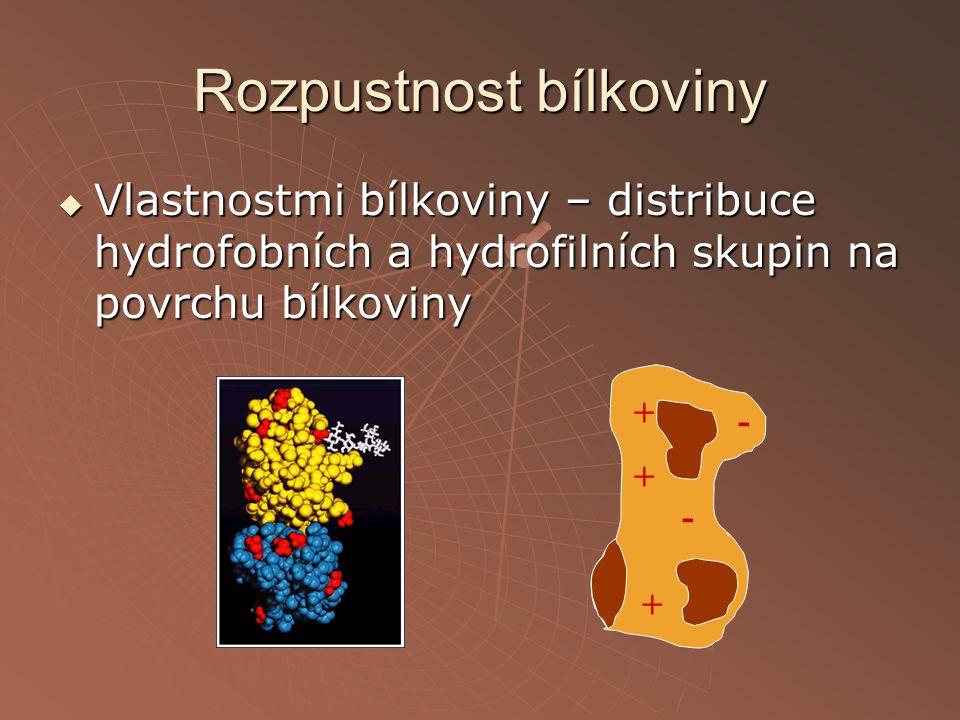 Rozpustnost bílkoviny  Vlastnostmi bílkoviny – distribuce hydrofobních a hydrofilních skupin na povrchu bílkoviny + + + - -