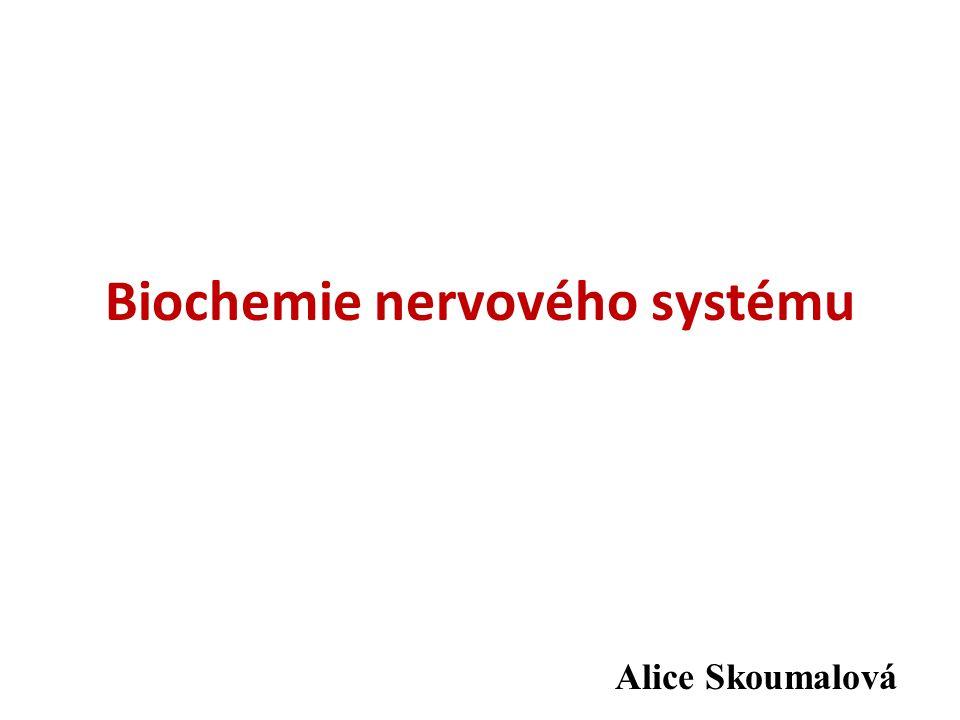 Biochemie nervového systému Alice Skoumalová