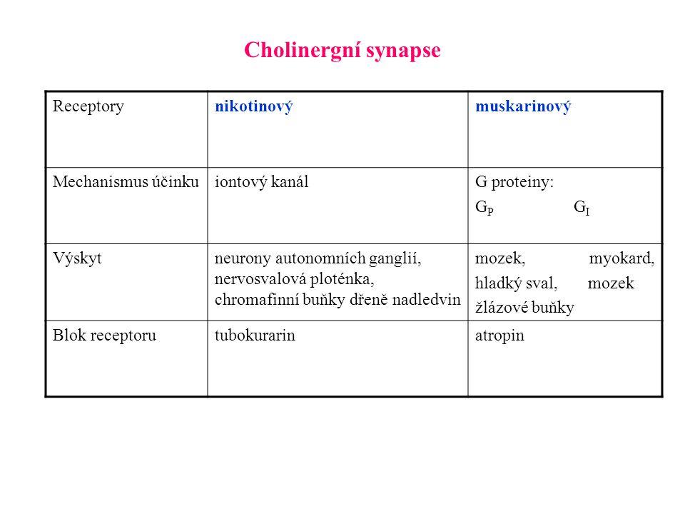 Cholinergní synapse Receptorynikotinovýmuskarinový Mechanismus účinkuiontový kanálG proteiny: G P G I Výskytneurony autonomních ganglií, nervosvalová