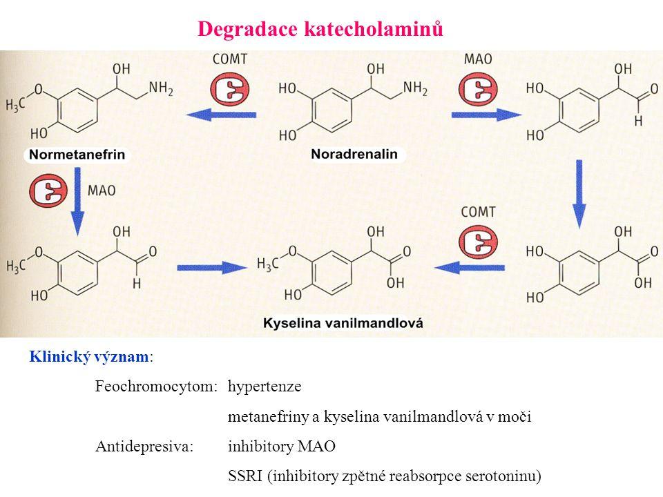 Degradace katecholaminů Klinický význam: Feochromocytom:hypertenze metanefriny a kyselina vanilmandlová v moči Antidepresiva:inhibitory MAO SSRI (inhibitory zpětné reabsorpce serotoninu)
