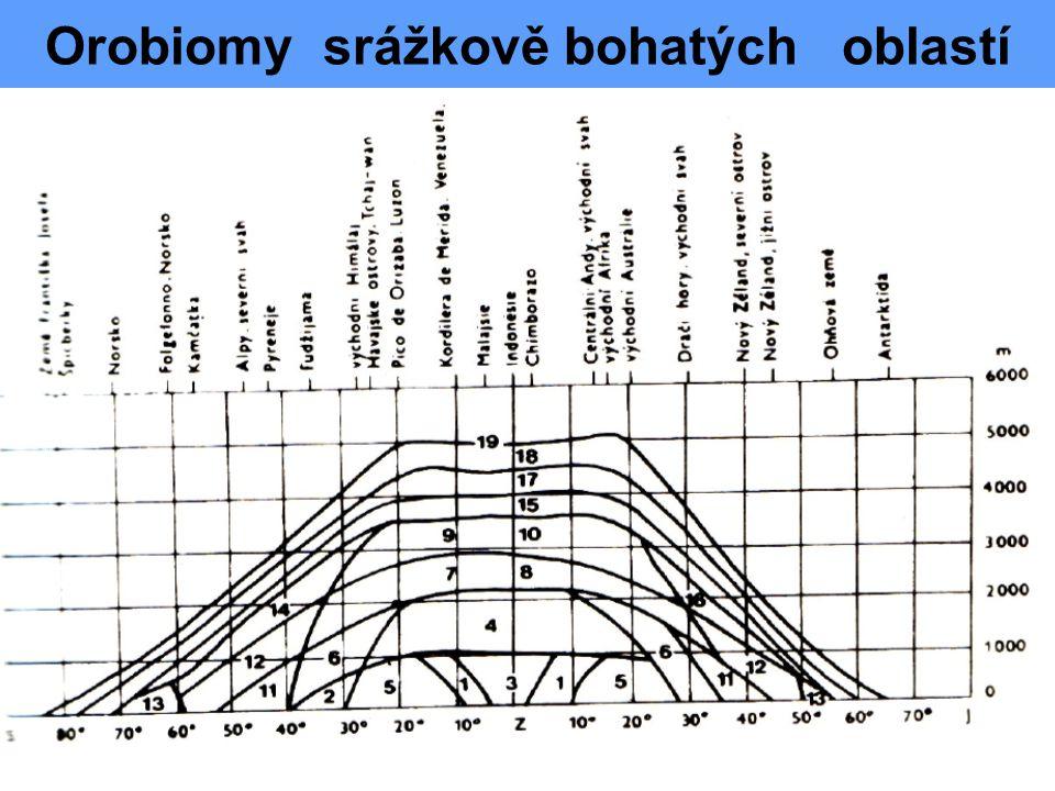 Orobiomy srážkově bohatých oblastí