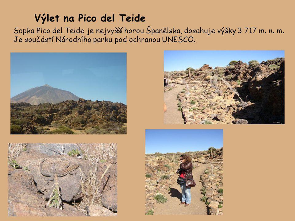 Výlet na Pico del Teide Sopka Pico del Teide je nejvyšší horou Španělska, dosahuje výšky 3 717 m.