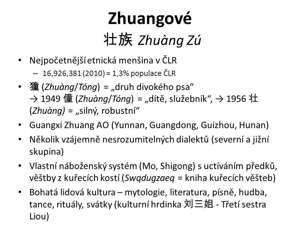 """Zhuangové 壮族 Zhuàng Zú Nejpočetnější etnická menšina v ČLR – 16,926,381 (2010) = 1,3% populace ČLR 獞 (Zhuàng/Tóng) = """"druh divokého psa → 1949 僮 (Zhuàng/Tóng) = """"dítě, služebník , → 1956 壮 (Zhuàng) = """"silný, robustní Guangxi Zhuang AO (Yunnan, Guangdong, Guizhou, Hunan) Několik vzájemně nesrozumitelných dialektů (severní a jižní skupina) Vlastní náboženský systém (Mo, Shigong) s uctíváním předků, věštby z kuřecích kostí (Swqdugzaeq = kniha kuřecích věšteb) Bohatá lidová kultura – mytologie, literatura, písně, hudba, tance, rituály, svátky (kulturní hrdinka 刘三姐 - Třetí sestra Liou)"""