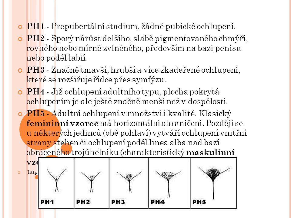 PH1 - Prepubertální stadium, žádné pubické ochlupení. PH2 - Sporý nárůst delšího, slabě pigmentovaného chmýří, rovného nebo mírně zvlněného, především