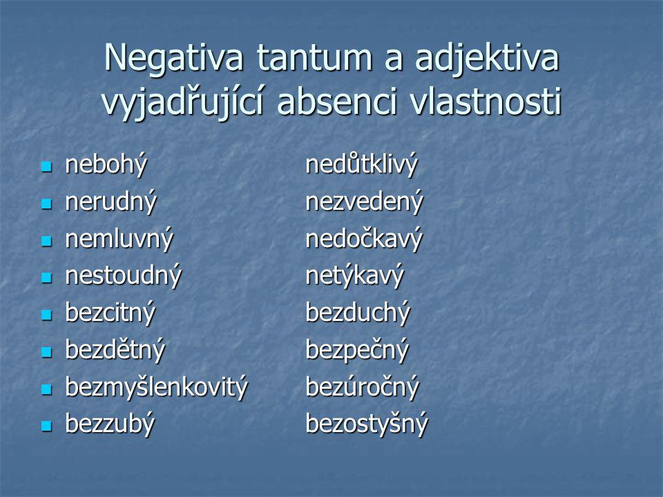 Negativa tantum a adjektiva vyjadřující absenci vlastnosti nebohýnedůtklivý nebohýnedůtklivý nerudnýnezvedený nerudnýnezvedený nemluvnýnedočkavý nemlu