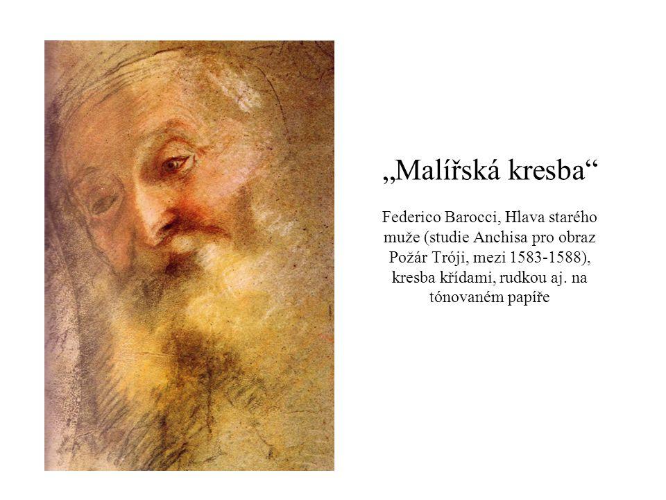 """""""Malířská kresba"""" Federico Barocci, Hlava starého muže (studie Anchisa pro obraz Požár Tróji, mezi 1583-1588), kresba křídami, rudkou aj. na tónovaném"""