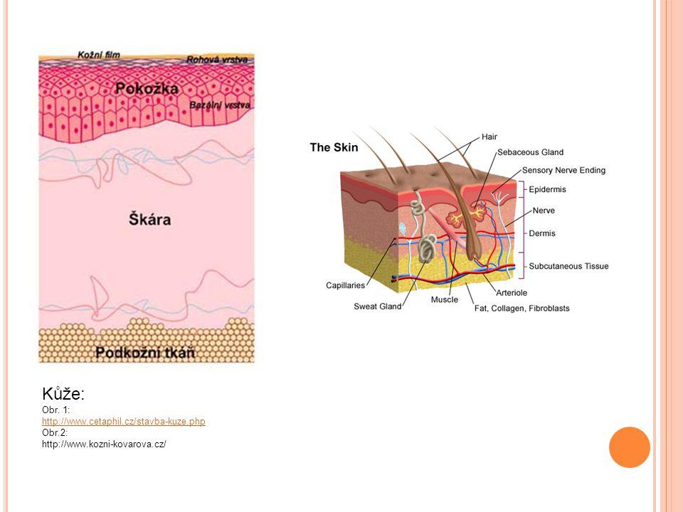 Žlázy s vnitřní a vnější sekrecí Předškolní věk: Filipínská míra: http://www.zdislava.net/foto/20080208/image015.html