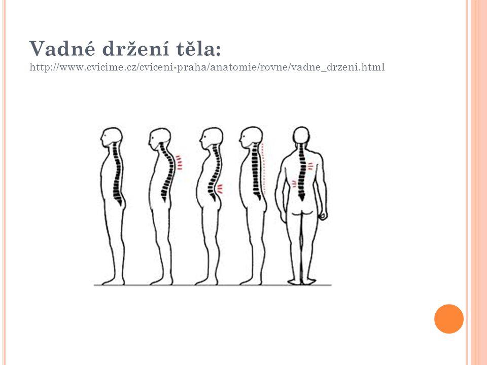Vadné držení těla: http://www.cvicime.cz/cviceni-praha/anatomie/rovne/vadne_drzeni.html