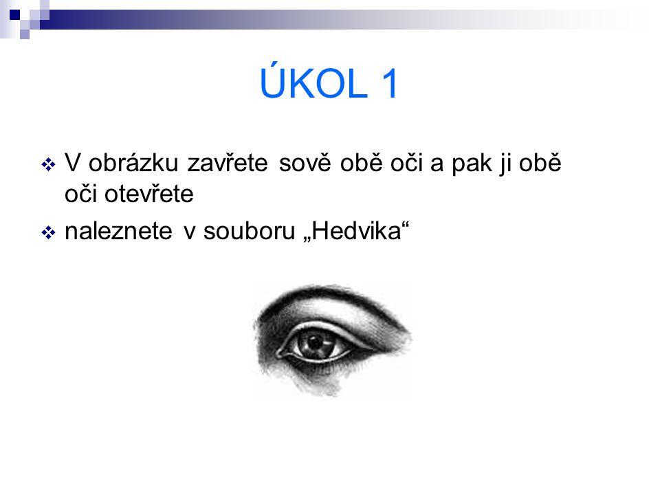 """ÚKOL 1  V obrázku zavřete sově obě oči a pak ji obě oči otevřete  naleznete v souboru """"Hedvika"""