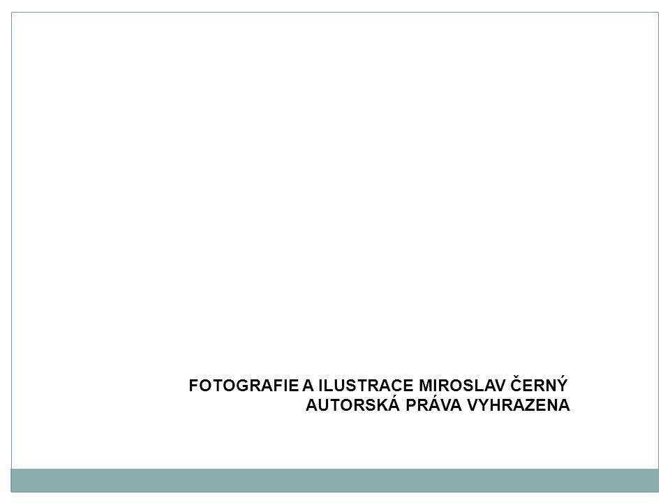FOTOGRAFIE A ILUSTRACE MIROSLAV ČERNÝ AUTORSKÁ PRÁVA VYHRAZENA
