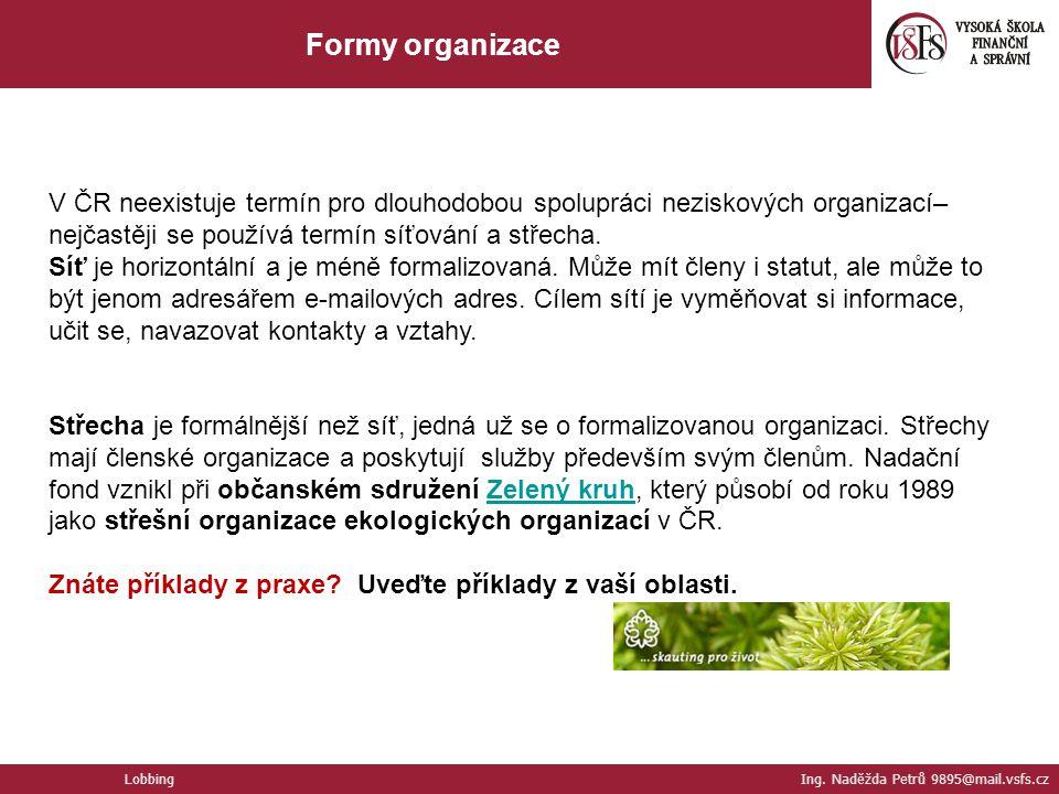 V ČR neexistuje termín pro dlouhodobou spolupráci neziskových organizací– nejčastěji se používá termín síťování a střecha. Síť je horizontální a je mé