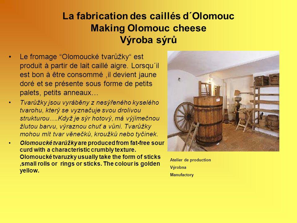 La fabrication des caillés d´Olomouc Making Olomouc cheese Výroba sýrů Le fromage Olomoucké tvarůžky est produit à partir de lait caillé aigre. Lorsqu