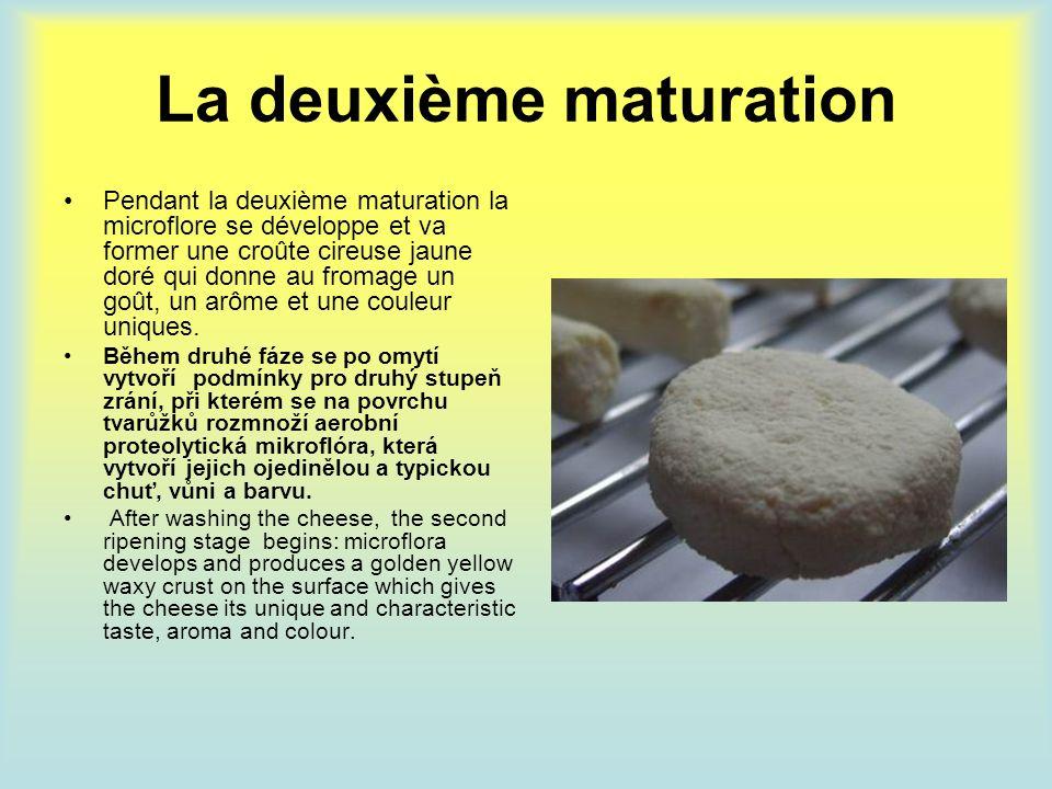 La deuxième maturation Pendant la deuxième maturation la microflore se développe et va former une croûte cireuse jaune doré qui donne au fromage un go