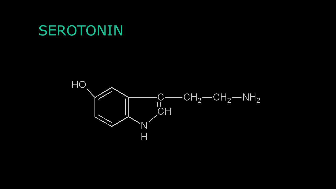 Agonisté a antagonisté Agonista β 1 a β 2 : Isoprenalin Antagonisté β 1 a β 2: Beta-blokátory