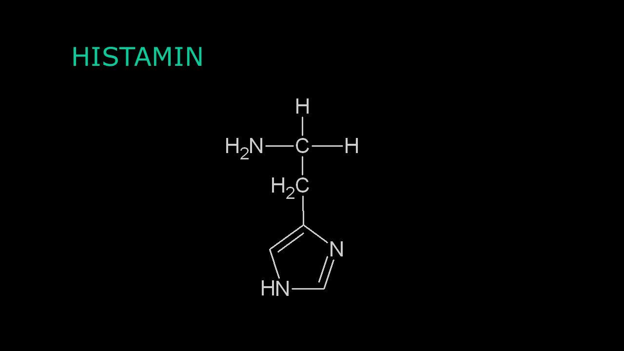Agonisté a antagonisté Agonisté: LSD Antagonisté: Trazodon Clozapin Risperidon