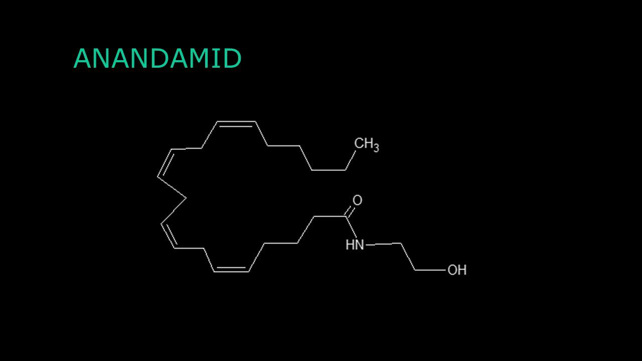 Charakteristika Převážně inhibiční neurotransmiter patřící do opioidů Váže se na tři druhy receptorů – μ, κ a δ