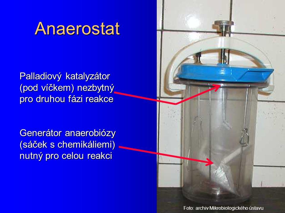 Anaerostat Palladiový katalyzátor (pod víčkem) nezbytný pro druhou fázi reakce Generátor anaerobiózy (sáček s chemikáliemi) nutný pro celou reakci Fot