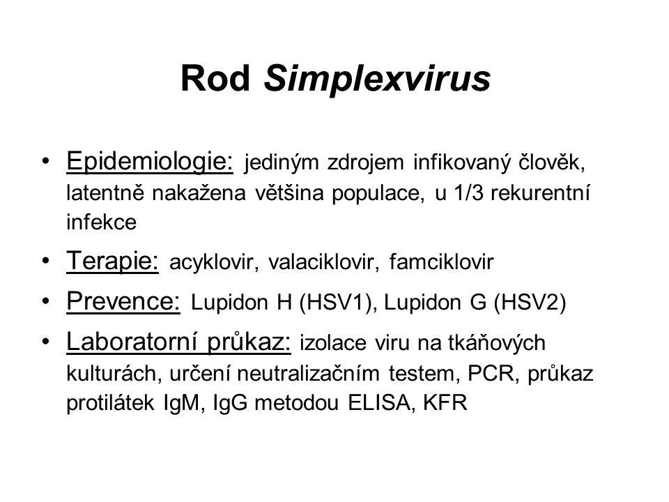 Rod Simplexvirus Epidemiologie: jediným zdrojem infikovaný člověk, latentně nakažena většina populace, u 1/3 rekurentní infekce Terapie: acyklovir, valaciklovir, famciklovir Prevence: Lupidon H (HSV1), Lupidon G (HSV2) Laboratorní průkaz: izolace viru na tkáňových kulturách, určení neutralizačním testem, PCR, průkaz protilátek IgM, IgG metodou ELISA, KFR