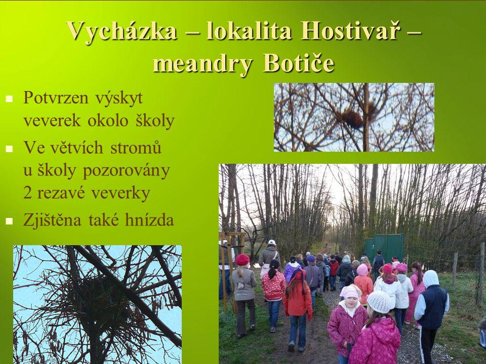 Vycházka – lokalita Hostivař – meandry Botiče Potvrzen výskyt veverek okolo školy Ve větvích stromů u školy pozorovány 2 rezavé veverky Zjištěna také