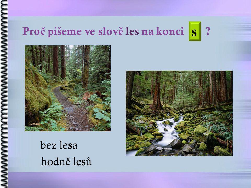 Pro č píšeme ve slov ě les na konci bez le s a hodn ě le s ů s