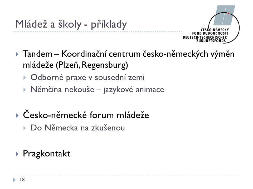 Mládež a školy - příklady  Tandem – Koordinační centrum česko-německých výměn mládeže (Plzeň, Regensburg)  Odborné praxe v sousední zemi  Němčina n