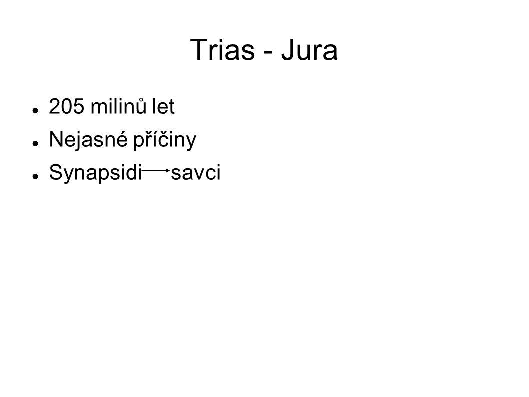 Trias - Jura 205 milinů let Nejasné příčiny Synapsidi savci