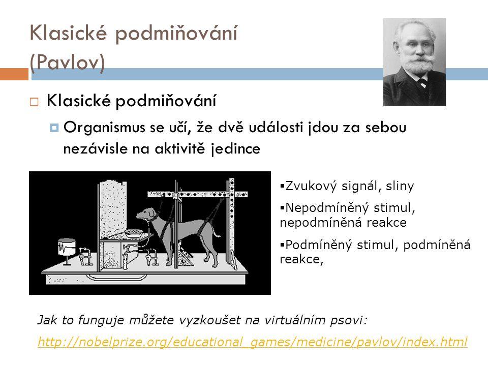 Klasické podmiňování (Pavlov)  Klasické podmiňování  Organismus se učí, že dvě události jdou za sebou nezávisle na aktivitě jedince Jak to funguje můžete vyzkoušet na virtuálním psovi: http://nobelprize.org/educational_games/medicine/pavlov/index.html  Zvukový signál, sliny  Nepodmíněný stimul, nepodmíněná reakce  Podmíněný stimul, podmíněná reakce,