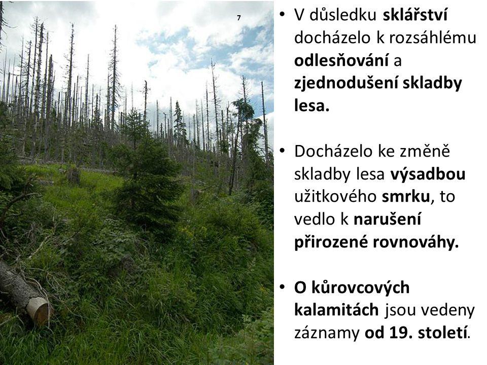 V důsledku sklářství docházelo k rozsáhlému odlesňování a zjednodušení skladby lesa. Docházelo ke změně skladby lesa výsadbou užitkového smrku, to ved
